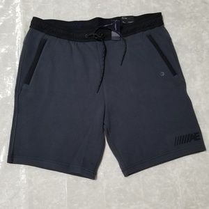 American Eagle Outfitters Gray Mens Shorts